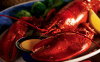 Tucson Red Lobster Restaurant