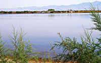 Roper Lake Tucson