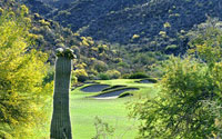 Gallery Golf Club Golf