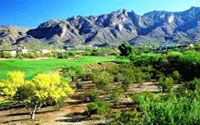 Oro Valley Country Club Tucson Arizona