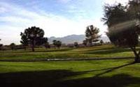 Golf Silverbell Golf