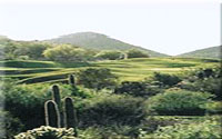 Starr Pass Golf Tucson Arizona