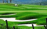 Starr Pass Golf