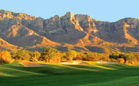 Sun City Oro Valley Views Golf Club