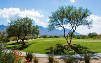 Sun City Vistoso Home for Sale