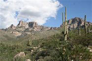 Oro Valley Lot for Sale