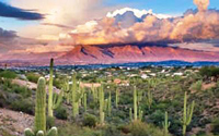 West Tucson Homes for Sale