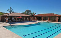 La Cholla Hills Home for Sale