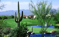 The Highlands at Dove Mountain Homes