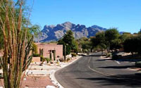 Homes in La Cholla Hills