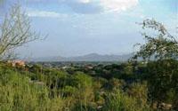Monte Del Oro Home